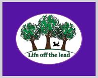 lotl logo image pizap.png