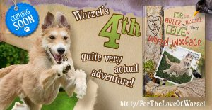 dog photoshoot for publications worzel wooface 4