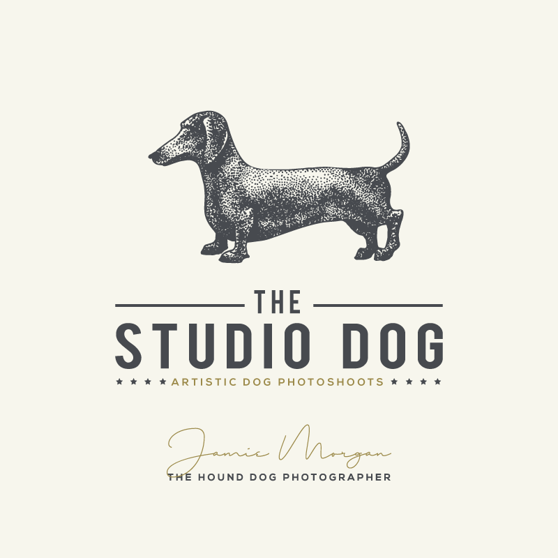 Studio Dog Photoshoot Experience