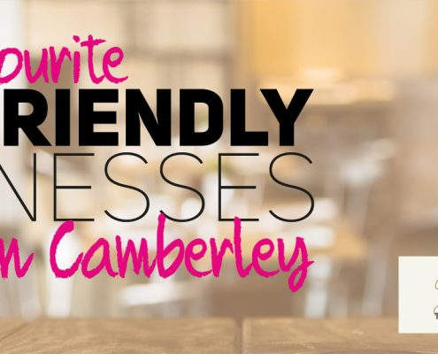 HDP Dog Friendly Businesses in Camberley