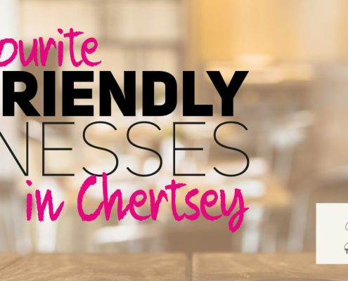 HDP Dog Friendly Businesses in Chertsey Surrey