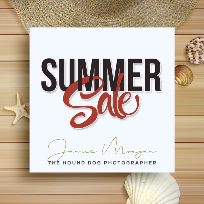 End of Summer Sale (CC)
