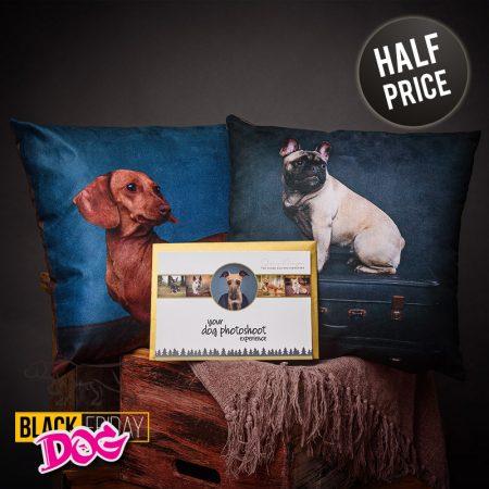 Hound-Dog-Gift-Vouchers-7-800x800-HALFPRICE