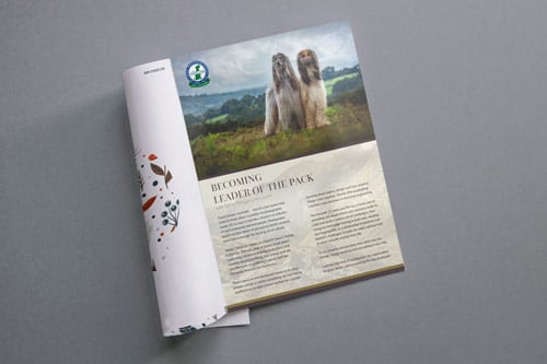the berkshire hound magazine interior mockup
